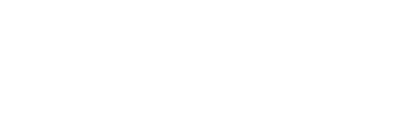 Australian Crisis Simulation Summit